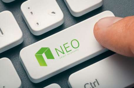 NEO Releases Global Monthly Report And Sees New Privacy Solutions Being Implemented