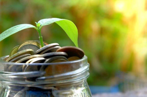 Coinbase Custody can now stake ATOM, Tezos and Algorand