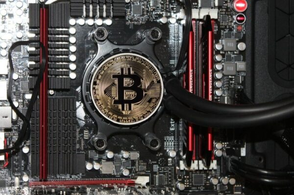 Hours into halving, Bitcoin network holds the fort unlike Bitcoin Cash and Bitcoin SV